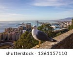 malaga city view  spain. view... | Shutterstock . vector #1361157110