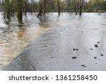 flooded stone and asphalt...   Shutterstock . vector #1361258450