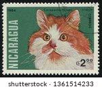 russia kaliningrad  25 march...   Shutterstock . vector #1361514233
