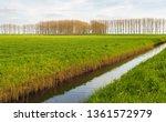 Dutch Polder Landscape With A...