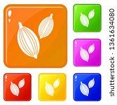 cardamom pods icons set...   Shutterstock .eps vector #1361634080