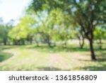 abstract blur city park bokeh... | Shutterstock . vector #1361856809