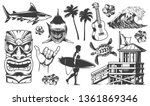 vintage surfing elements...   Shutterstock .eps vector #1361869346