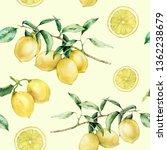 watercolor lemon slice and... | Shutterstock . vector #1362238679