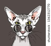 oriental shorthair cat in a...   Shutterstock .eps vector #1362312770