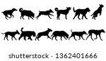 set silhouette dog on a white... | Shutterstock .eps vector #1362401666
