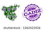 vector collage of grape wine...   Shutterstock .eps vector #1362422426