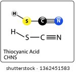 thiocyanic acid molecule... | Shutterstock .eps vector #1362451583