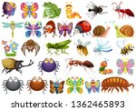 set of insect character... | Shutterstock .eps vector #1362465893