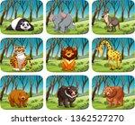 set of wild animal in forest... | Shutterstock .eps vector #1362527270