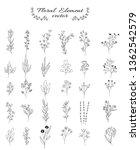 flower and leaves set for... | Shutterstock .eps vector #1362542579