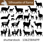collection of silhouettes of... | Shutterstock .eps vector #1362584699