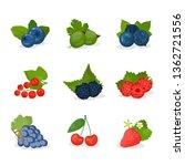 berries and fruit vector...   Shutterstock .eps vector #1362721556