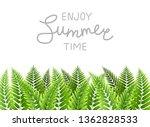 green fern leaves border with... | Shutterstock .eps vector #1362828533