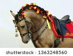 lusitano horse is a breed of... | Shutterstock . vector #1363248560