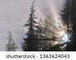 sunbeams through trees near... | Shutterstock . vector #1363624043