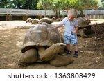cute toddler  observing giant... | Shutterstock . vector #1363808429