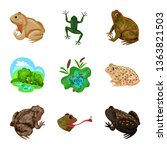 vector illustration of frog and ... | Shutterstock .eps vector #1363821503