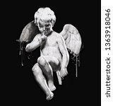 Dark Angel Illustration.skull...