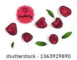 cartoon hand drawn raspberries...   Shutterstock .eps vector #1363929890