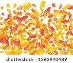 oak  maple  wild ash rowan... | Shutterstock .eps vector #1363940489