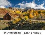Golden Autumn Aspen on Last Dollar Road near Telluride Colorado - stock photo