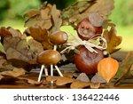 Chestnut Figure