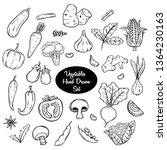vegetables hand drawn or doodle ... | Shutterstock .eps vector #1364230163