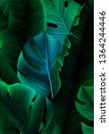 tropical banner with realistic...   Shutterstock .eps vector #1364244446