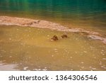 Sand piles at Diablo Lake, North Cascades National Park, WA, USA
