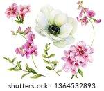 Set Of Watercolor Flowers....