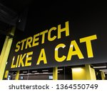 motivational text in gym for...   Shutterstock . vector #1364550749