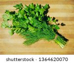 parsley cilantro dill bunch on... | Shutterstock . vector #1364620070