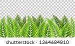 green fern leaves border on... | Shutterstock .eps vector #1364684810