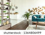 spacious studio apartment... | Shutterstock . vector #1364806499