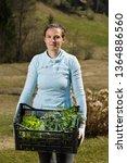 woman gardener showing... | Shutterstock . vector #1364886560