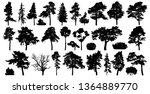 trees set isolated on white... | Shutterstock .eps vector #1364889770