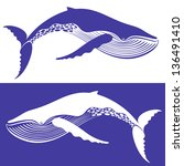 whale   Shutterstock .eps vector #136491410