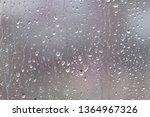 still life with many rain... | Shutterstock . vector #1364967326