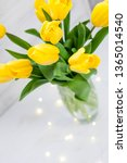 bouquet of yellow tulips and... | Shutterstock . vector #1365014540
