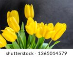 a bouquet of yellow tulips on a ... | Shutterstock . vector #1365014579