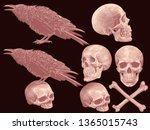 skulls  bones and crows. design ... | Shutterstock .eps vector #1365015743