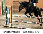 competition for equestrian... | Shutterstock . vector #1365087479