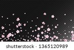 Stock vector nice sakura blossom isolated vector magic blowing d petals wedding pattern japanese blooming 1365120989