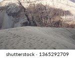 nature scene of sand dune... | Shutterstock . vector #1365292709