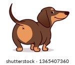 cute wiener sausage dog vector... | Shutterstock .eps vector #1365407360