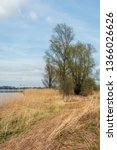 on the bank of the wide dutch... | Shutterstock . vector #1366026626