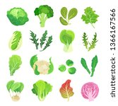 leafy vegetables set ... | Shutterstock .eps vector #1366167566