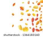 oak  maple  wild ash rowan... | Shutterstock .eps vector #1366183160