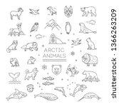 line arctic wildlife concept... | Shutterstock .eps vector #1366263209